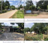 ที่ดินพร้อมสิ่งปลูกสร้างหลุดจำนอง ธ.ธนาคารกรุงไทย สงขลา สะเดา ท่าโพธิ์