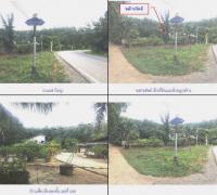 ที่ดินพร้อมสิ่งปลูกสร้างหลุดจำนอง ธ.ธนาคารกรุงไทย สงขลา บางกล่ำ ท่าช้าง