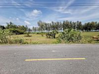 ที่ดินเปล่าหลุดจำนอง ธ.ธนาคารทหารไทยธนชาต สงขลา ระโนด บ่อตรุ